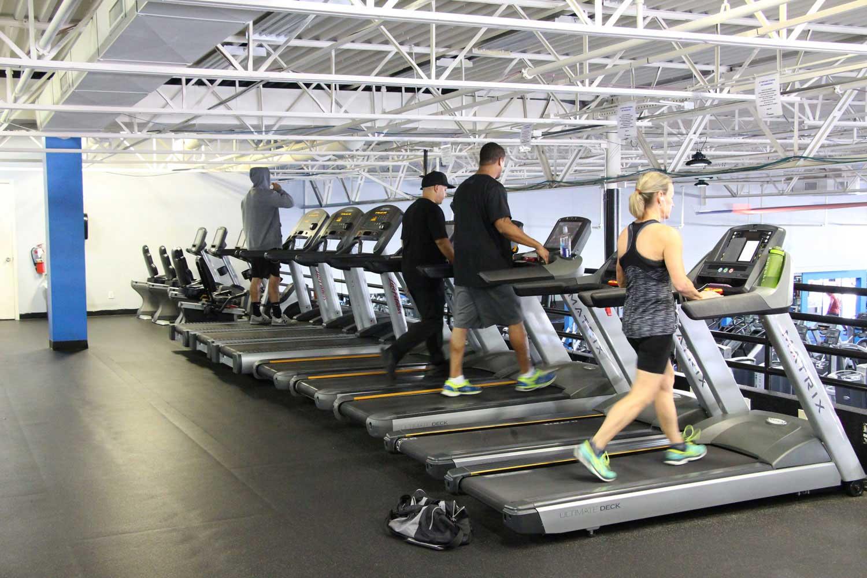 members-on-a-treadmill